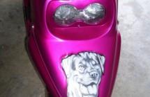 Booster chien